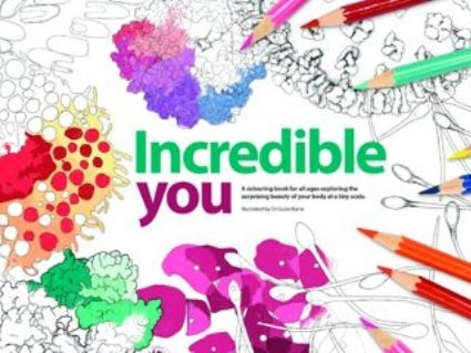 These free colouring-in resources explore the surprising beauty of your body at a tiny scale, and are suitable for all ages. Incredible You offers the chance to explore all 17 pathology specialities – there is at least one illustration, plus supporting information, for each.