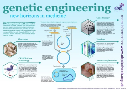 An introduction to genetic engineering for 14-16 and 16+ students, including a downloadable poster. The resource consists of a poster and a set of teaching materials that includes information, classroom activities and quizzes. Free full size posters can be ordered from the ABPI site or downloaded in pdf format.